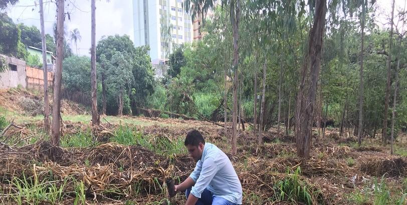 Recitec - Reflorestamento - Plantio de Mudas Nativas - Execução de PRAD